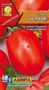 Помидоры «челнок» - описание сорта, агротехника выращивания