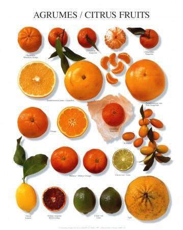 Красный апельсин: где его используют