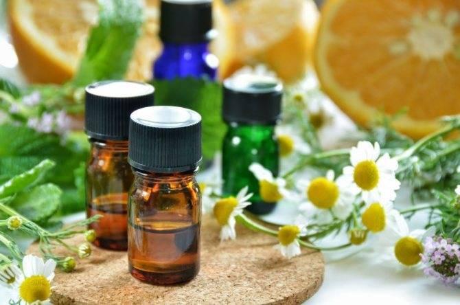 Пихтовое масло при остеохондрозе шейного отдела – свойства и показания
