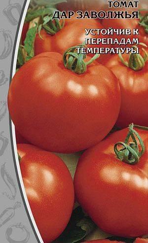Особенности сорта томатов дар заволжья