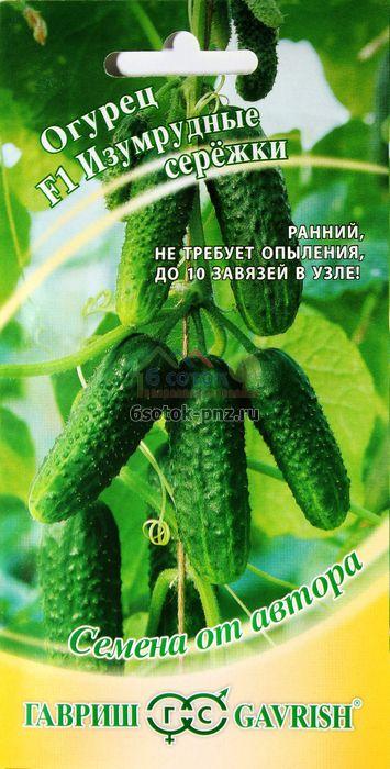 Огурцы изумрудные сережки: отзывы, фото куста, урожайность и описание сорта