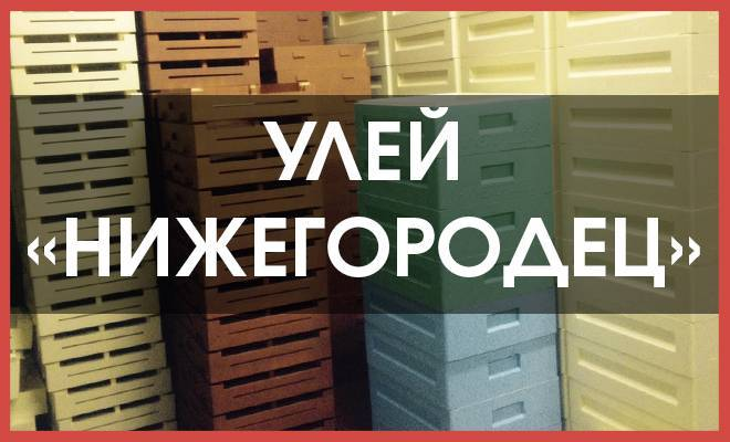 Ульи «нижегородец»: особенности ульев из ппу, преимущества и недостатки конструкций нижегородских пчеловодов