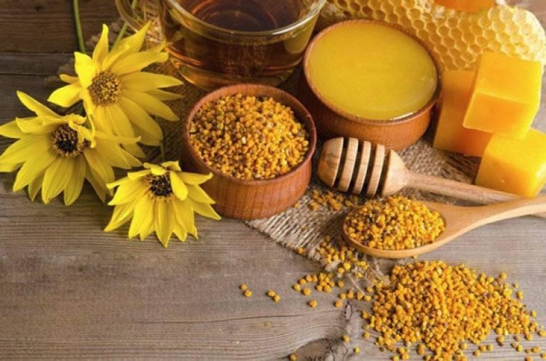 Мед с пергой лечебные свойства и противопоказания
