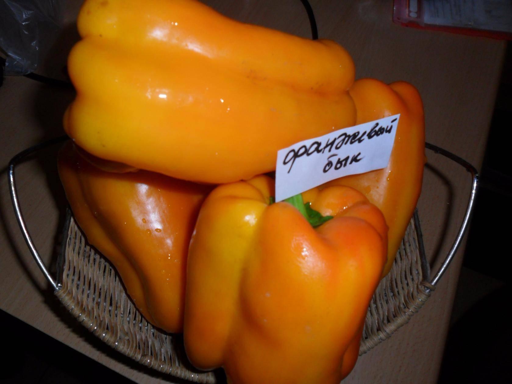 Перец «красный бык»: сочный и сладкий