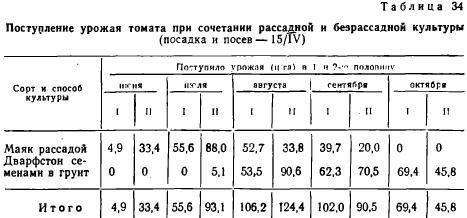 Температура для рассады томатов: оптимальные режим, при какой выращивать