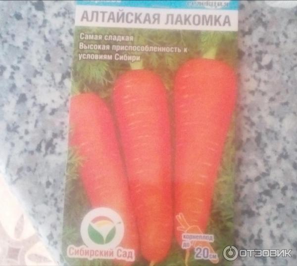 Сорт моркови алтайская лакомка: описание, посадка и уход