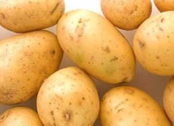 Вкусный и красивый картофель «славянка»: описание вкусного сорта украинской селекции
