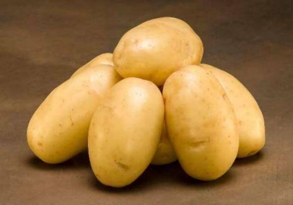 Раннеспелый столовый сорт картофеля «уладар»: описание, фото и отзывы дачников