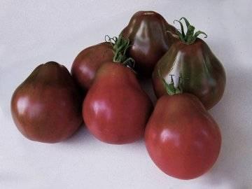 Лучшие сорта черных помидоров (в том числе бордовых, коричневых, синих): их описания и характеристики