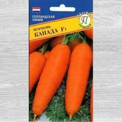 Все о сорте моркови император: описание, выращивание, хранение урожая и другие нюансы
