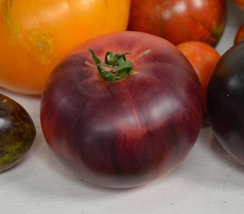 Помидоры аметистовая драгоценность: описание сорта, фото, урожайность - 2 редиски