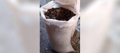 Как правильно подкармливать комнатные растения? какие виды удобрений бывают.