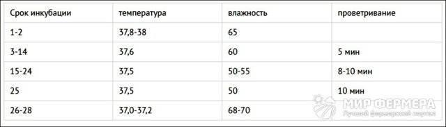 Инкубация цесарок таблица режима инкубации