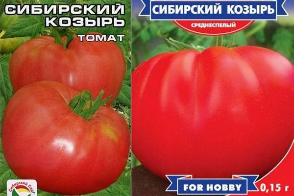 Томат сибирский козырь: описание, фото, отзывы