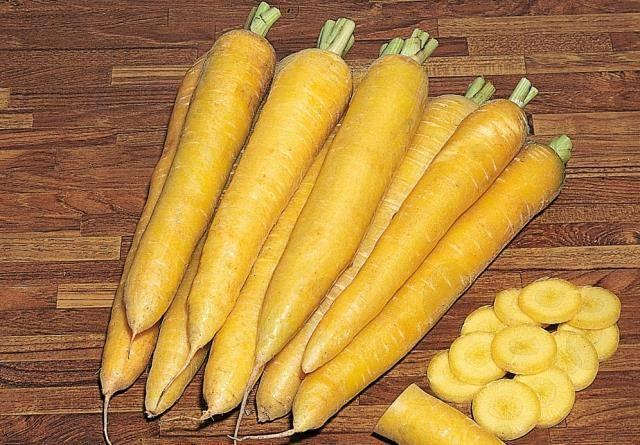 Морковь – полезные свойства, состав и противопоказания