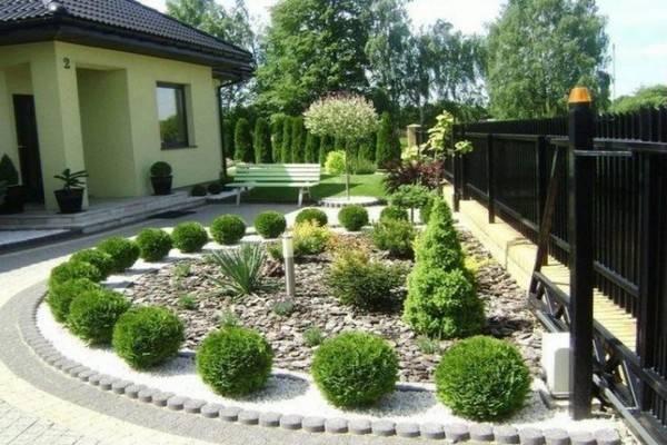 Гортензия в ландшафтном дизайне сада: 7 сортов + 6 схем посадки