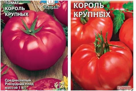Сорт томатов король гигантов — описание и правила выращивания