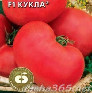 Характеристика и описание сорта томата кукла f1, его урожайность
