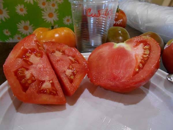 Томат сибирский малахит — описание сорта, урожайность, фото и отзывы садоводов