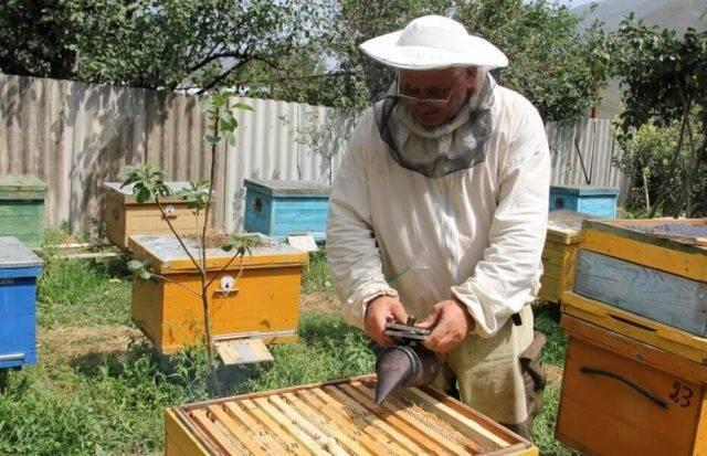Поилка для пчел