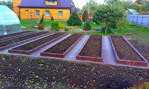 Чем полить траву, чтобы она не росла