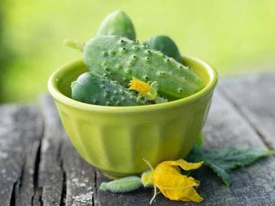 Лучшие самоопыляемые сорта огурцов для теплиц и открытого грунта