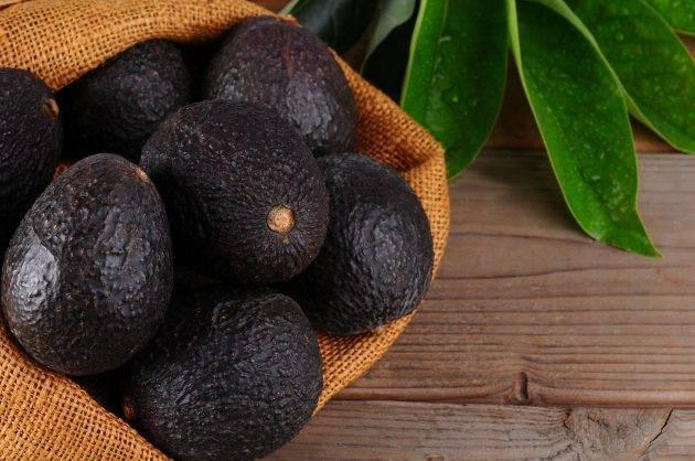 Авокадо орех внутри можно ли есть