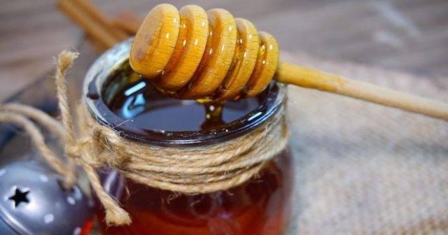 Подкормка пчел прошлогодним или старым медом