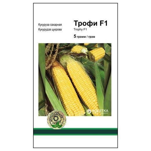 Кукуруза пионер — описание сорта, фото и отзывы