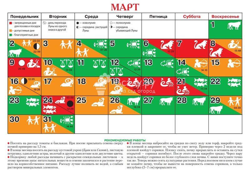 Лунный календарь цветовода на 2020 год для комнатных растений