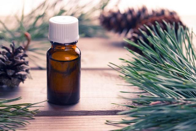 Лечебные свойства и применение пихтового масла