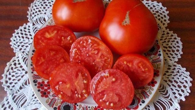 Монгольский карлик: супердетерминантный сибирский сорт помидоров