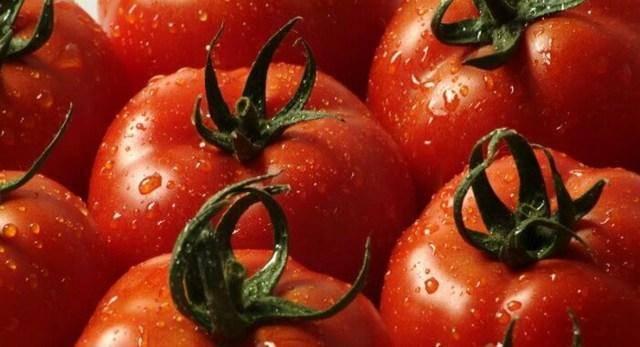 Томат любимый праздник: характеристика и описание сорта, фото, отзывы, урожайность
