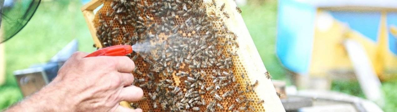 Обработка пчел дым-пушкой Бипином с керосином