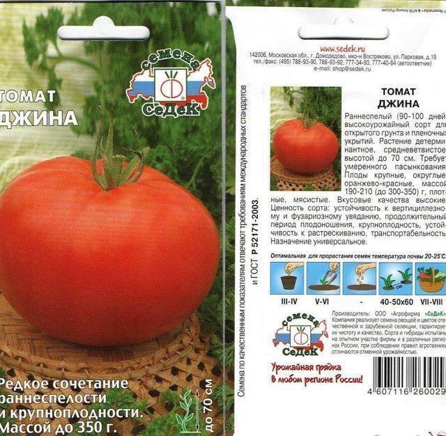 Оптимальные томаты «джина тст»: выращивание, характеристики, описание сорта