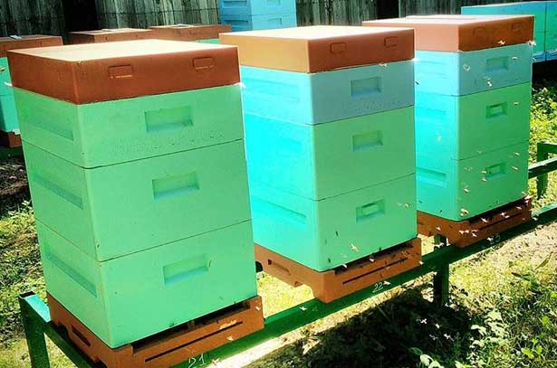 Ульи из ппу: изготовление ульев из пенополиуретана с помощью формы своими руками в домашних условиях, отзывы пчеловодов