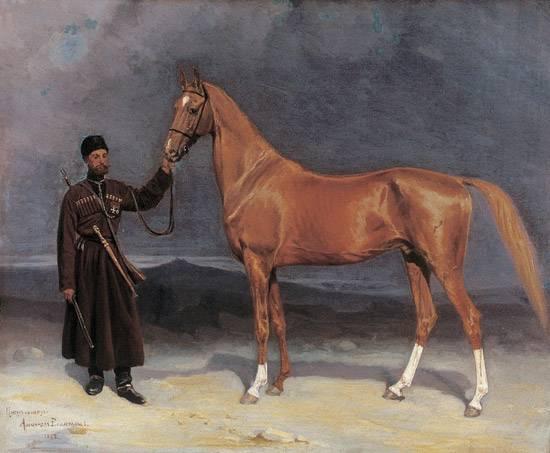 Ахалтекинская лошадь: история и описание породы