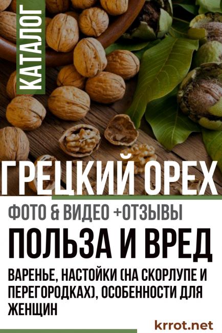 Настойка на перегородках грецкого ореха на водке и спирту