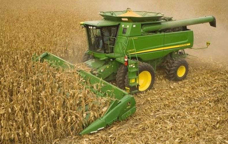 Кукуруза на силос: уборка, возделывание, урожайность