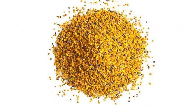 Цветочная пыльца: природная сила!