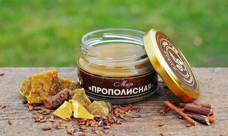 Как использовать прополис в лечебных целях: что лечит пчелиный прополис, как приготовить настойку и мазь