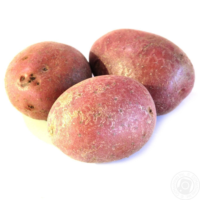 Картофель мерлот: познаем по пунктам