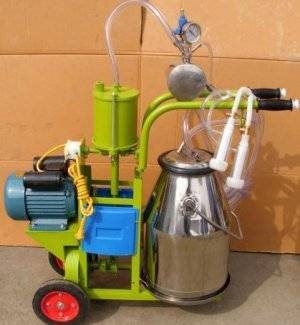Характеристики оборудования для доения коров
