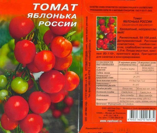 Как вырастить томат яблонька россии