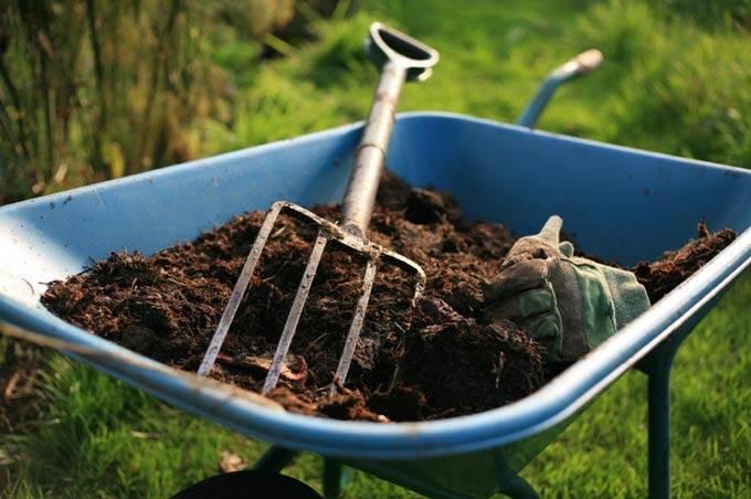 Козий навоз как удобрение - правильное применение помета 2020