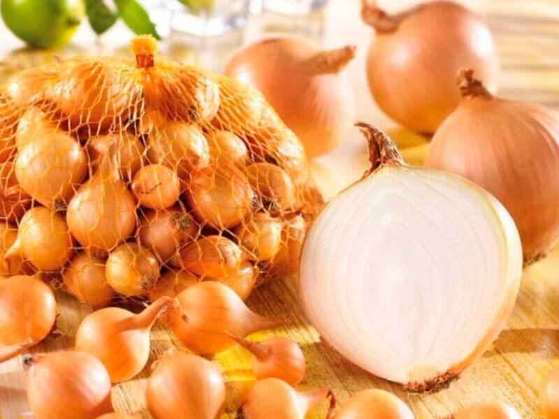 Лук севок штутгартер ризен  — секреты и правила его выращивания