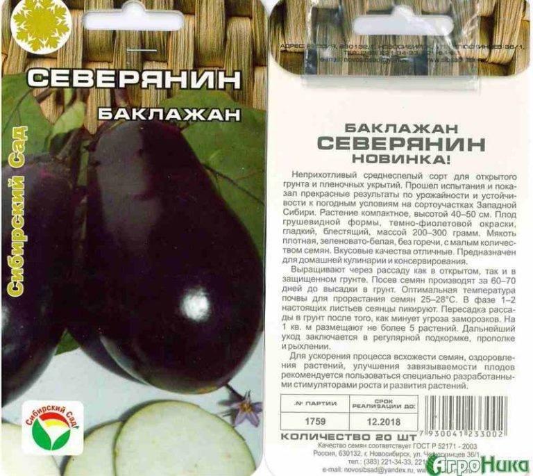 Выращивание баклажанов в сибири и на урале, лучшие сорта