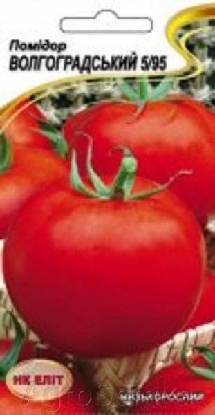 Описание и характеристика сорта томата волгоградский 5/95, его урожайность