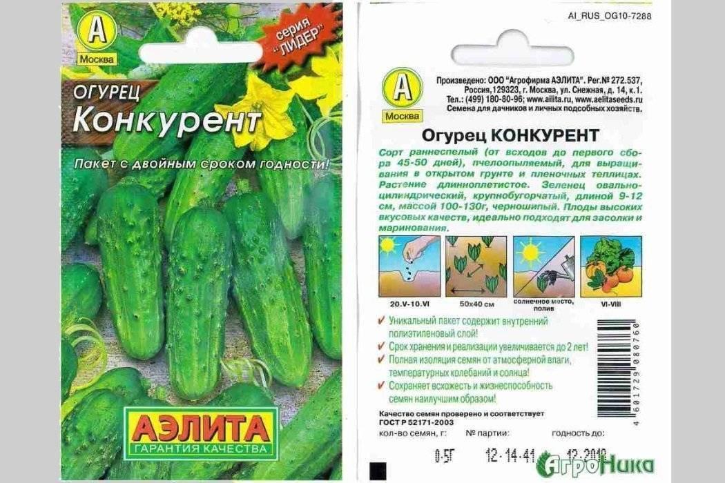 Огурец «конкурент»: описание сорта и агротехника выращивания