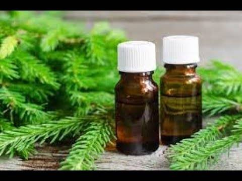 Пихтовое масло – инструкция по применению, цена, отзывы, аналоги